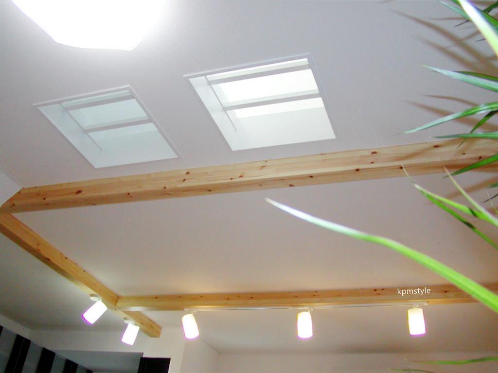 天窓と床ガラスが採光を考慮する家  (八戸市根城)12